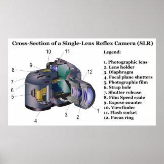 Diagram of a Single Lens Reflex Camera SLR Posters