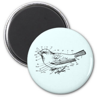Diagram of a Sparrow 2 Inch Round Magnet