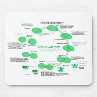 Diagram of Chloroplast Replication Cycle Mouse Pad