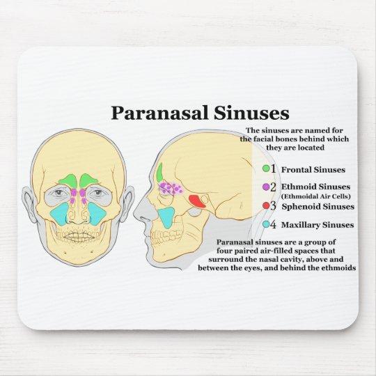 Diagram of Human Paranasal Sinuses Mouse Pad