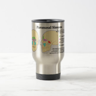 Diagram of Human Paranasal Sinuses 15 Oz Stainless Steel Travel Mug