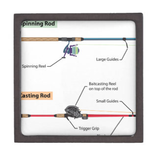 Diagram of spinning rod and baitcasting rod vector jewelry box