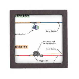 Diagram of spinning rod and baitcasting rod vector keepsake box