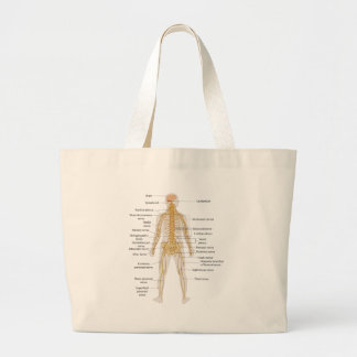 Diagram of the Human Body's Nervous System Canvas Bag