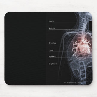Diagram of the respiratory system and the heart mouse pad