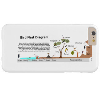 Diagram of Various Bird Nests Barely There iPhone 6 Plus Case