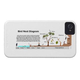 Diagram of Various Bird Nests iPhone 4 Case