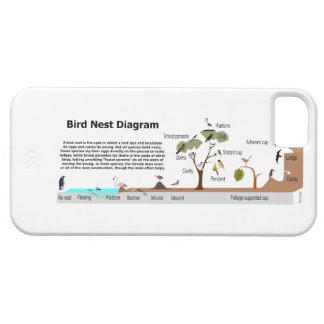Diagram of Various Bird Nests iPhone SE/5/5s Case