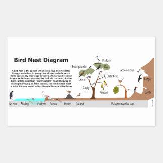 Diagram of Various Bird Nests Rectangular Sticker