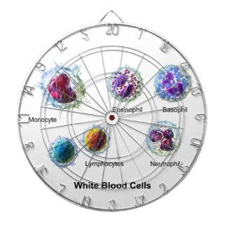 Diagram of White Blood Cells Leukocytes Dart Board
