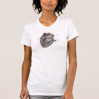 Diagrama anatómico del corazón del vintage tee shirt