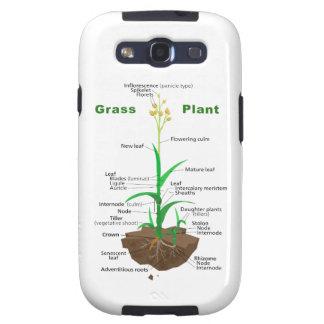 Diagrama de la planta de Graminoids de la hierba Galaxy SIII Carcasa