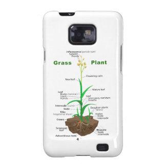 Diagrama de la planta de Graminoids de la hierba Samsung Galaxy S2 Carcasas