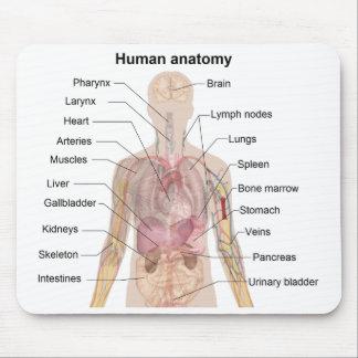 Diagrama de la sombra de la anatomía humana alfombrillas de ratones