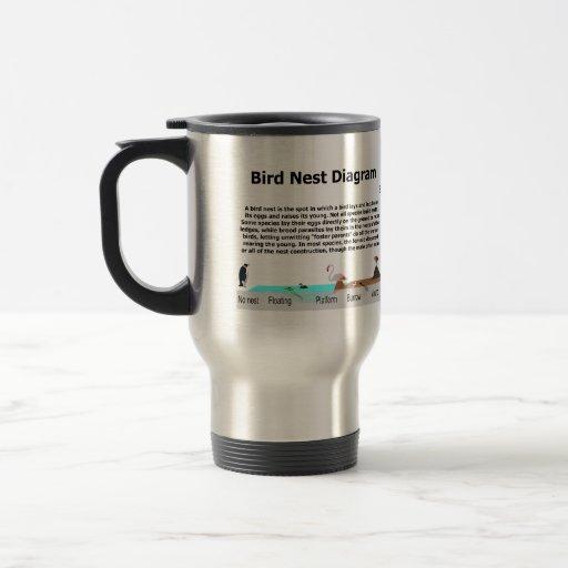 Diagrama de las diversas jerarquías del pájaro taza de viaje de acero inoxidable