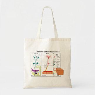 Diagrama de las funciones de sistema nervioso bási bolsas