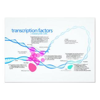 """Diagrama de los factores de la transcripción del invitación 5"""" x 7"""""""