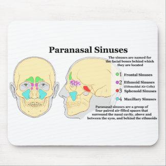 Diagrama de los sinos de Paranasal humanos Alfombrillas De Raton