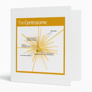 Diagrama de un centrosoma