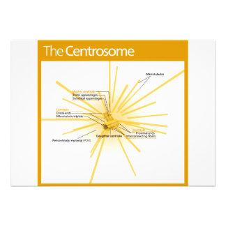Diagrama de un centrosoma invitaciones personales