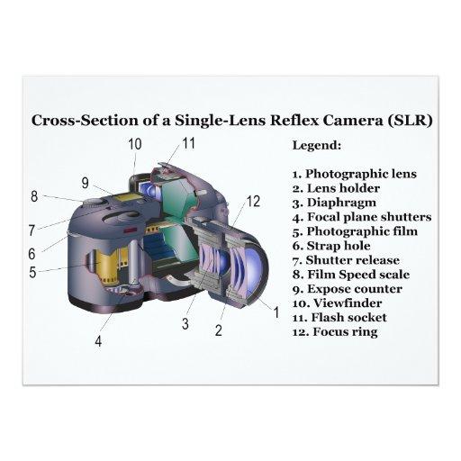 """Diagrama de una cámara refleja SLR de la sola Invitación 6.5"""" X 8.75"""""""