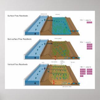 Diagrama de una charca agrícola del tratamiento de posters