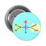Diagrama del aminoácido pin