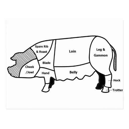 Diagrama del cerdo tarjeta postal