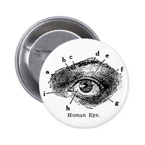 Diagrama del ojo humano del vintage pin redondo de 2 pulgadas