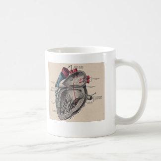 Diagrama humano antiguo de la anatomía del corazón taza clásica