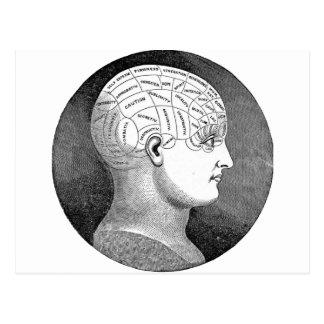 Diagrama impresionante de la cabeza de la postal