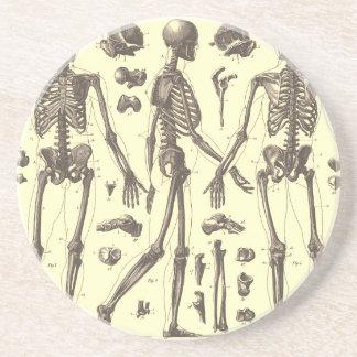 Diagramas del esqueleto del vintage posavasos diseño