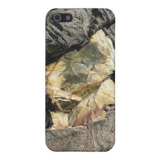 Diamante de la piscina de la marea iPhone 5 carcasa