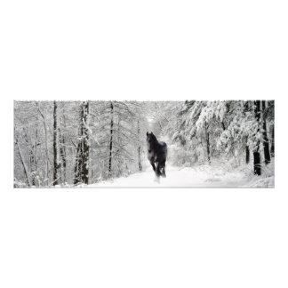 DIAMANTE frisio VII - impresión de la foto Cojinete