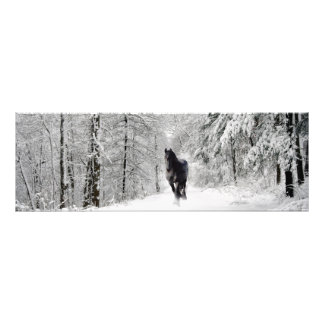 DIAMANTE frisio VII - impresión de la foto