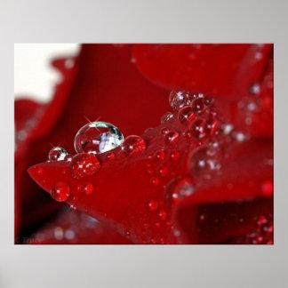 Diamantes color de rosa rojos poster
