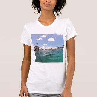 Diamond Head Hawaii Turtle Tee Shirts