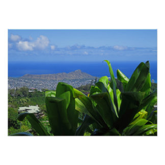 Diamond Head with Ti Leaves Poster