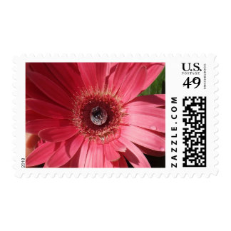 Diamond In The Ruffle Postage Stamps