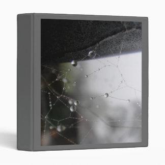 Diamond Reflections Water Drops Glittering in Web Binder