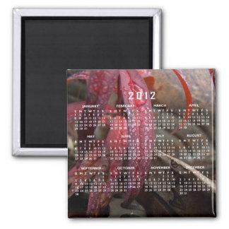 Diamond Studded Leaf; 2012 Calendar Magnets