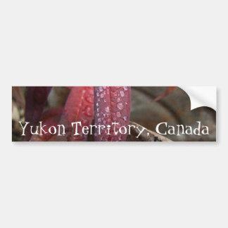 Diamond Studded Leaf; Yukon Territory Souvenir Car Bumper Sticker