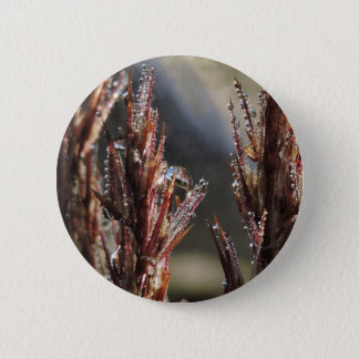 Diamond trees button