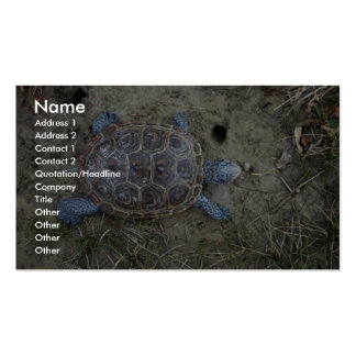 Diamondback Terrapin Business Card Template