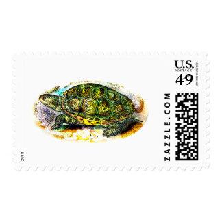 diamondback Terrapin Turtle from JungleWalk.Com Stamps