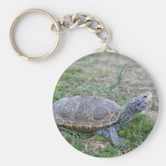 diamondback terrapin turtle keychain
