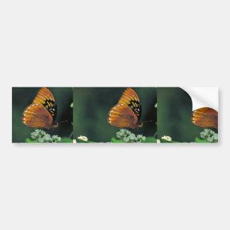 Diana fritillary on Wild quinine Car Bumper Sticker