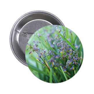 Dianella flowers pinback buttons