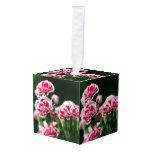 Dianthus #1 cube ornament