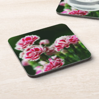 Dianthus #1 drink coaster